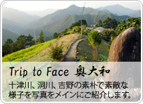Trip to Face ������